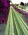 Tren VBallester.JPG