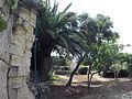 Triq Sa Maison, Il-Furjana, Malta - panoramio (5).jpg