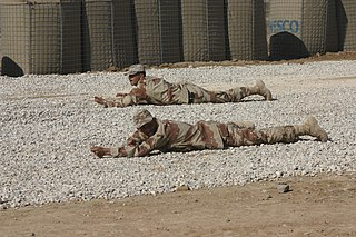 Prone position body position in which one lies flat with the chest down and back up