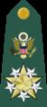 US Army O12 shoulderboard.png
