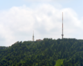 Uetliberg Towers Summer.png