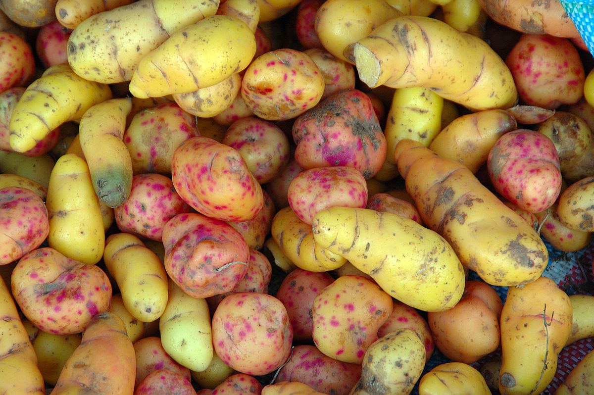 Yams Are A Common Ingredient In Natural Treatments For Menopause