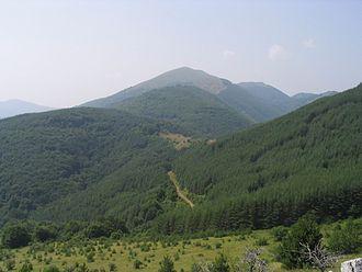 Ruy (mountain) - Ruy Mountain's eponymous highest peak (1706 m), Bulgaria.
