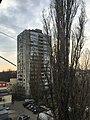 View - panoramio (93).jpg