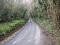 View along Cauldham Lane near Hockley Sole - geograph.org.uk - 1164568.jpg