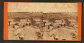 View of Crater, showing entrance to bunker (?), by Anderson, D. H. (David H.), 1827-.png