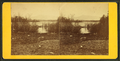 View of the Pond, from Robert N. Dennis collection of stereoscopic views.png
