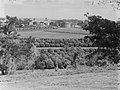 View of unidentified harvest and an industrial yard (AM 76949-1).jpg