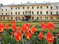 Villa Pisani, Vescovana, tulipani.JPG