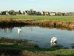 Village Pond, Broughton Gifford - geograph.org.uk - 681571.jpg
