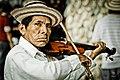Violin Folclórico.jpg