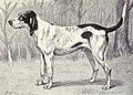 Virelade from 1915.JPG