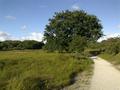 Vlakte van Waalsdorp (Waalsdorpervlakte) 2016-08-10 img. 578.png
