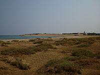 Wadi el Gemal National Red Sea.jpg