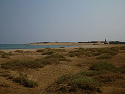 Wadi el Gemal National Red Sea.jpg