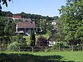 Waldbröl-hahn-4.jpg