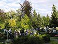 WaldfriedhofMM10.JPG
