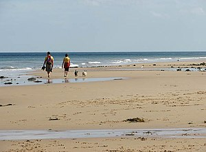 English: Walking barefoot in the wet sand The ...