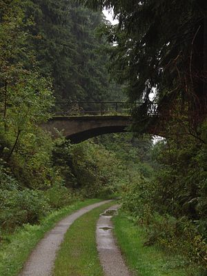 Langelsheim–Altenau (Oberharz) railway - Footpath on the line of the old Innerste Valley Railway