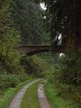 Wanderweg Innerstetalbahn harz.JPG