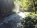 Waterfall Marmore in 2020.29.jpg