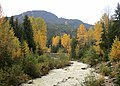 Whistler in autumn (22279856606).jpg