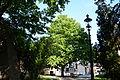 Wiener Naturdenkmal 800 - Baumhasel (Hietzing) l.JPG