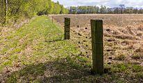 Wijnjeterper Schar, Natura 2000-gebied provincie Friesland 006.jpg