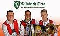 Wildbach Trio Pressefoto.jpg