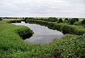 Wildfowl haven near Oxlands Hill, Welwick - geograph.org.uk - 198706.jpg