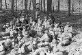 Wilhelm Walther, Dienst im Wald 2, 2-067-068-5900.tif