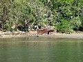 Windybank's Boatshed.JPG