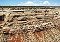 Wingate Sandstone (Lower Jurassic; Cold Shivers Point, Columbus Canyon, Colorado National Monument, Colorado, USA) 7 (23609087769).jpg