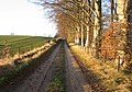 Winter sun on country road - geograph.org.uk - 626218.jpg