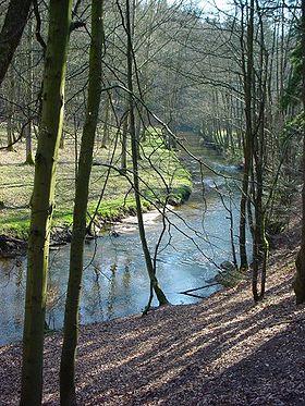 WitzhaveBilleSachsenwald.jpg