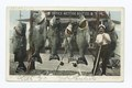 World's Record Catch of Sea Bass, Santa Catalina, Calif (NYPL b12647398-67751).tiff