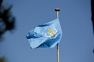 World Blood Donor Day - Image: World Health Organization Flag
