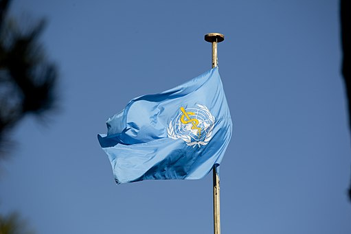 World Health Organization Flag