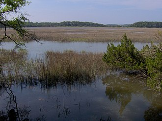 Wormsloe Historic Site - Jones Marsh, formerly the Skidaway Narrows, looking toward Long Island (spans the horizon) and Skidaway Island (visible top-right)