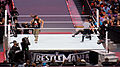 WrestleMania 31 2015-03-29 19-13-45 ILCE-6000 9313 DxO (17928767780).jpg