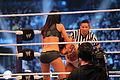 WrestleMania XXX IMG 5116 (13770999905).jpg