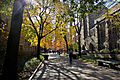 Yale University Cross Campus 2.jpg