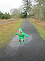Young puddle stomper (6845386814).jpg