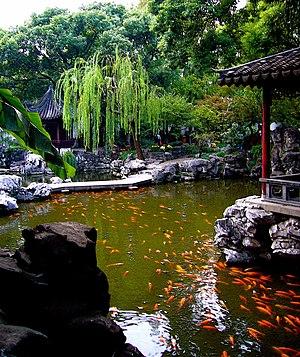 Koi - Koi in Yu Garden, Shanghai