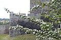 Zamek będziński położony na wysokiej skarpie na lewym brzegu Czarnej Przemszy stanowi przykład budownictwa obronnego z połowy XIV w 1.jpg