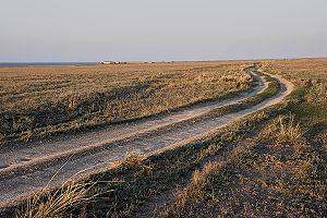 Lake Zaysan - A road near the coast of Lake Zaysan