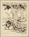 """""""Let Your Fruit Trees Save Sugar."""", ca. 1917 - ca. 1919 - NARA - 512514.tif"""