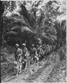 """U.S. Marine `Raiders' and their dogs, which are used for scouting and running messages, starting off for the jungle fro - NARA - 532371.tif"