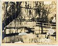 'The White Bridges' RAHS-Osborne Collection (13995841719).jpg