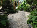 (Jardín Botánico de Quito) pic a4.JPG